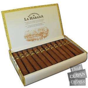 san cristobal punta » True Cuban Cigars